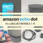 スマートスピーカー入門機 Amazon Echo Dotのリアルな使い道